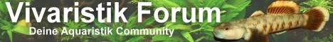 Vivaristik Forum